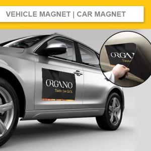 Vehicle Magnet & Car Magnet (0.9mm High-Suction Formula Grade)